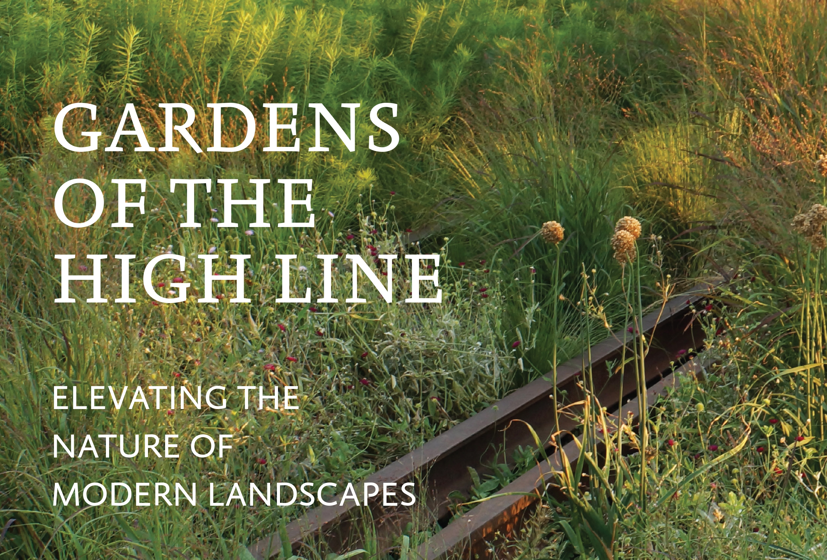 Book Review: Gardens Of The High Line: Elevating The Nature Of Modern  Landscapes By Piet Oudolf And Rick Darke   Landscape NotesLandscape Notes